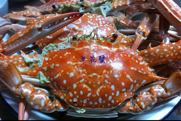 兰花蟹的做法 兰花蟹怎么做如何做好吃 兰花蟹家常做法大全 妍维尼私