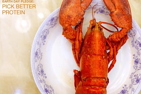 清蒸大龙虾的做法 清蒸大龙虾怎么做如何做好吃 清蒸大龙虾家常做法