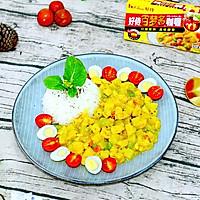 日式咖喱土豆鸡肉盖饭#奇妙咖喱,拯救萌娃食欲#