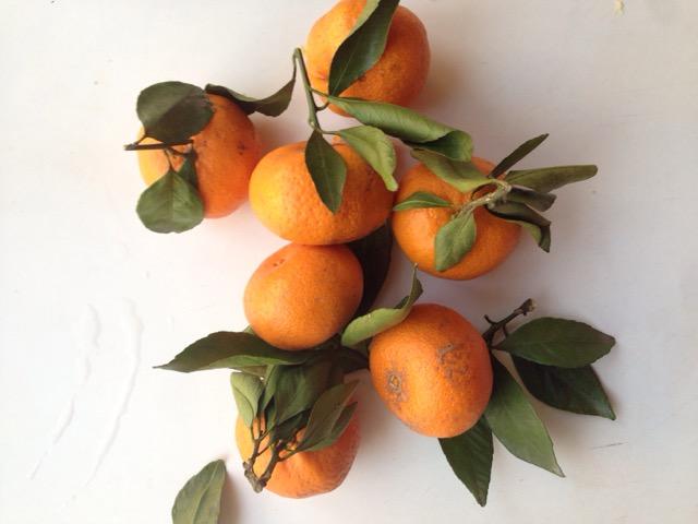糖水橘子的做法步骤 6. 开锅撇去浮沫,小火煮10分钟即可 7.