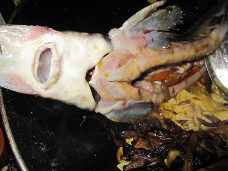 鲟鱼八珍锅的做法图解26
