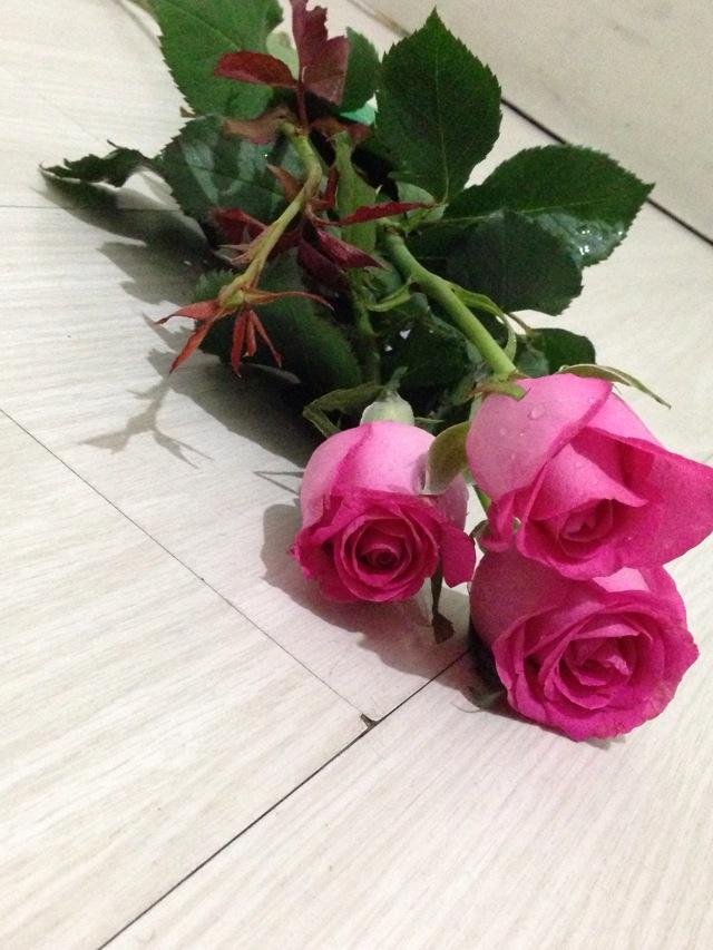 总所周知,玫瑰代表爱情,但外观利于欣赏玫瑰花还可以制成玫瑰花糖。是泡茶,制作甜点的好东西。 玫瑰花味甘微苦、性温,最明显的功效就是理气解郁、活血散淤和调经止痛。此外,玫瑰花的药性非常温和,能够温养人的心肝血脉,舒发体内郁气,起到镇静、安抚、抗抑郁的功效。女性在月经前或月经期间常会有些情绪上的烦躁,喝点玫瑰花可以起到调节作用。在工作和生活压力越来越大的今天,即使不是月经期,也可以多喝点玫瑰花,安抚、稳定情绪。对于女性来说,玫瑰花喝多了,还可以让自己的脸色同花瓣一样变得红润起来。这是因为玫瑰花有很强的行气活血
