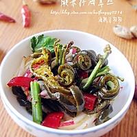蕨菜拌海茸丝