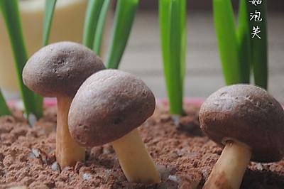 巧克力蘑菇泡芙