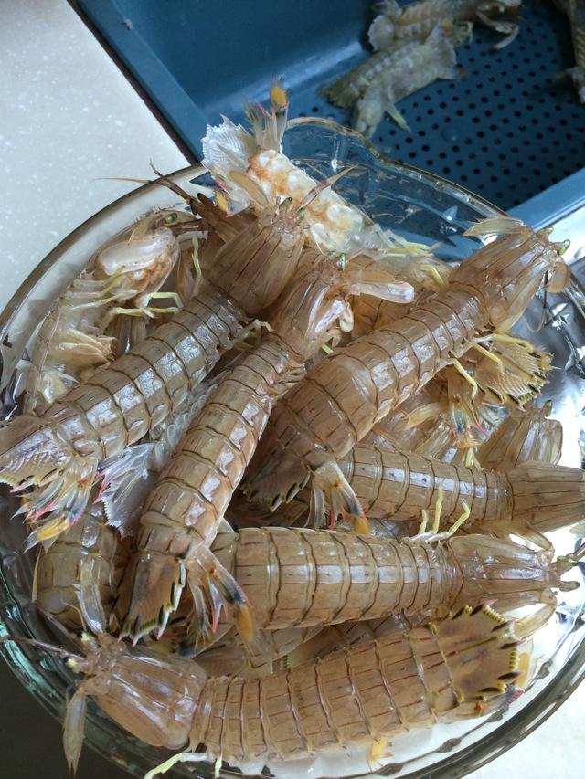椒盐皮皮虾的做法步骤