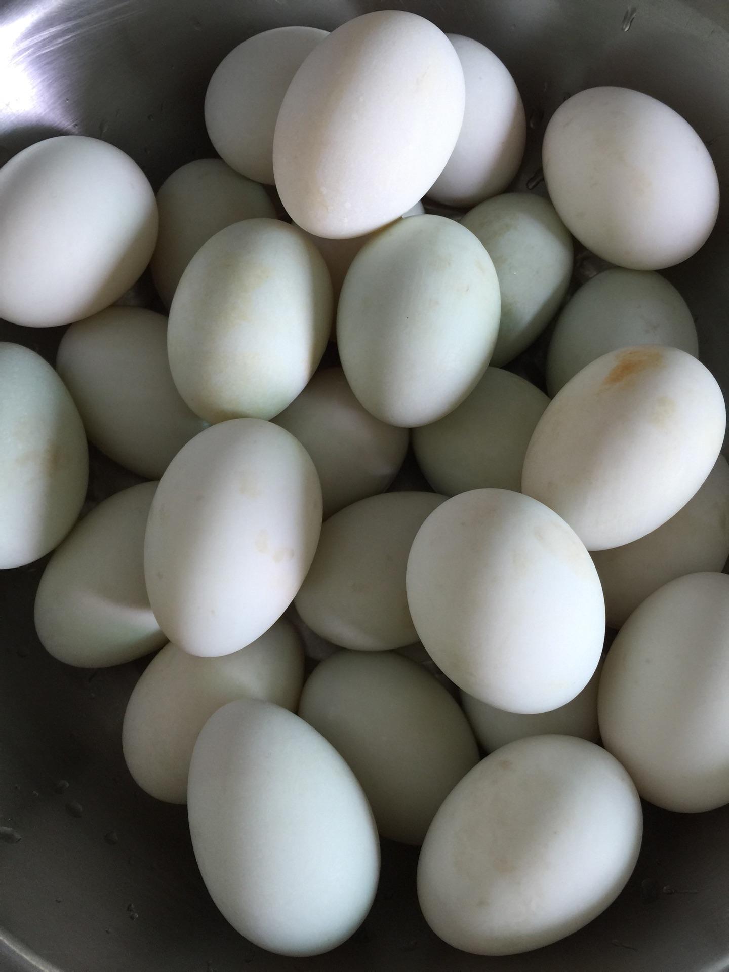 腌制咸鸭蛋的做法图解1