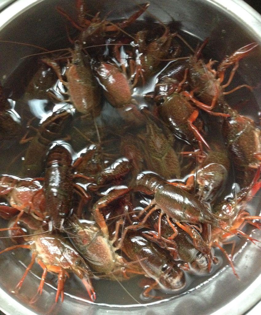 家常十三香龙虾的做法图解1