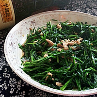 韭菜炒肉丝#厨此之外,锦享美味#