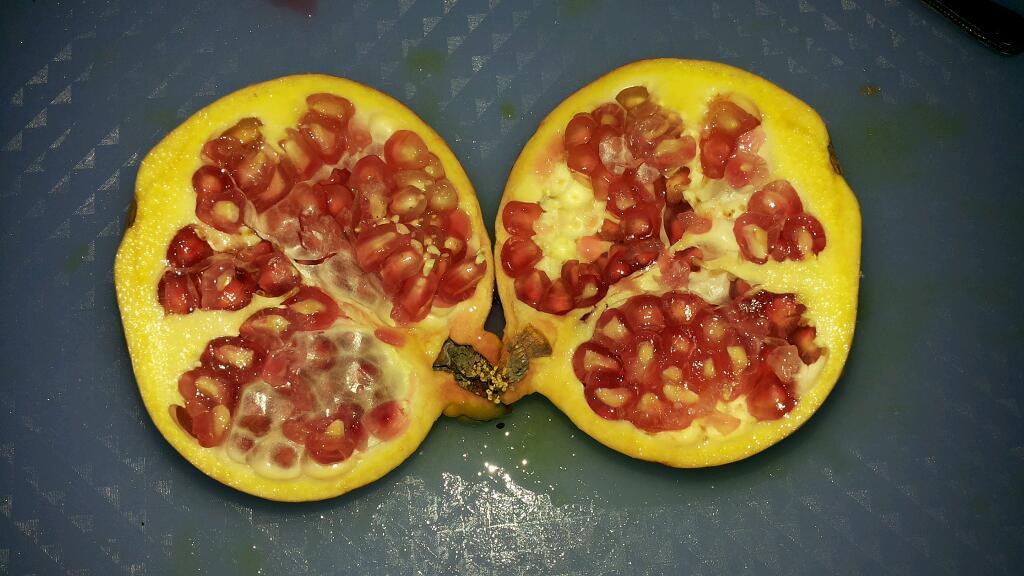 水果酵素的做法_【圖解】水果酵素怎麼做如何做好吃 ...