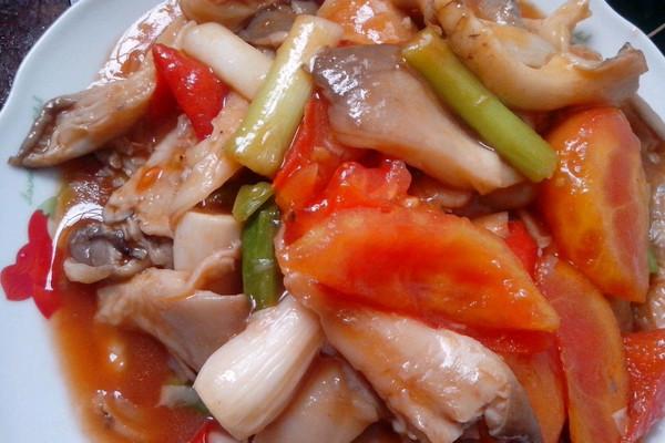 番茄炒两个的平菇_【图解】做法炒番茄做好吃_你烤羊人吃平菇腿吃的了吗图片