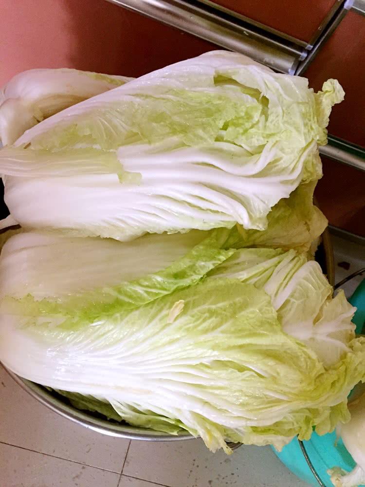 辣白菜的做法步骤