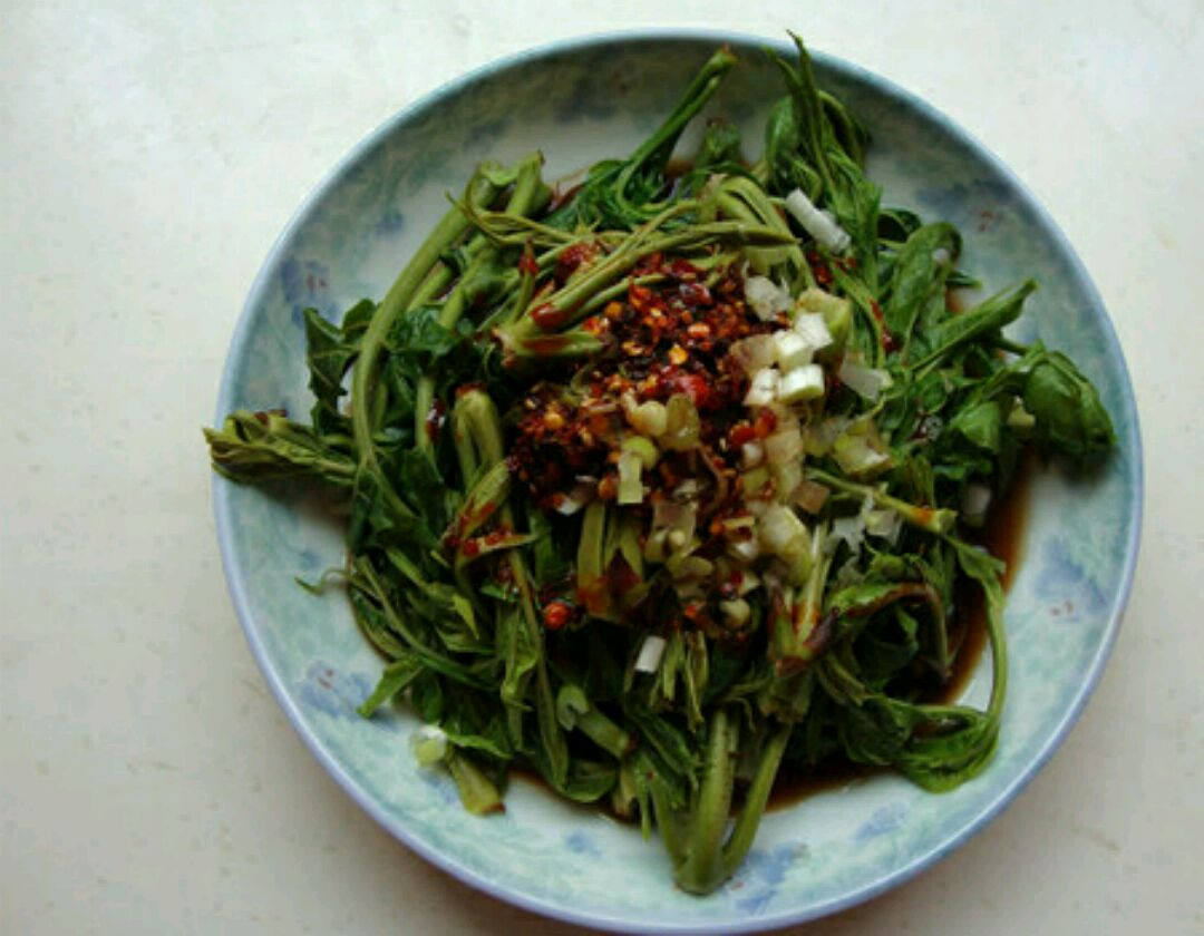 腌香椿的做法_腌香椿叶的做法-腌香椿的做法 怎么腌香椿芽_补肾参考网