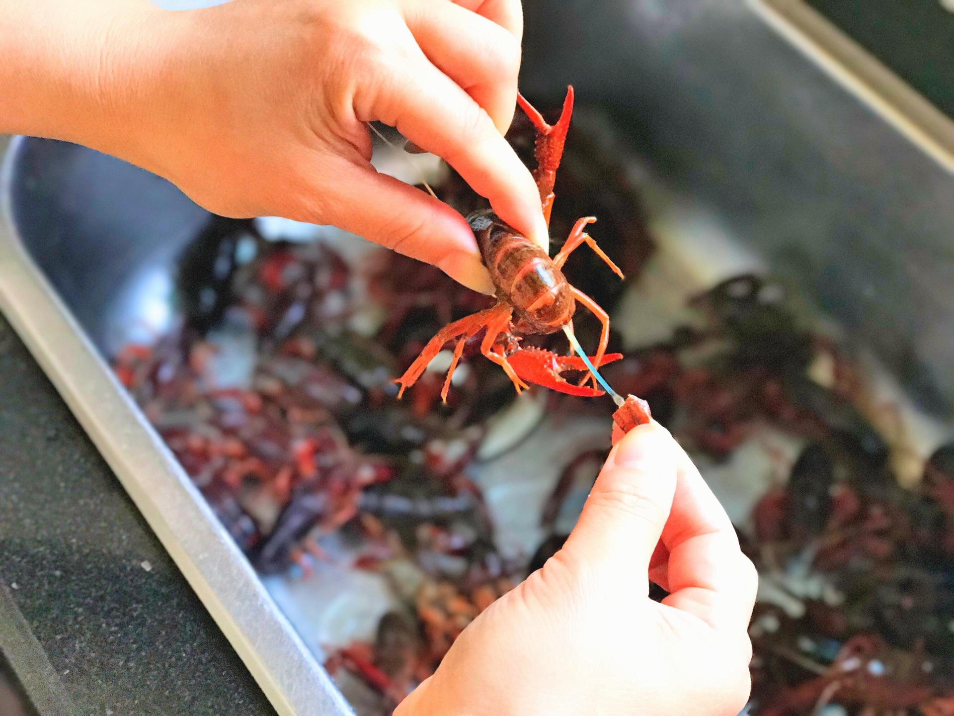 香辣小龙虾的做法步骤