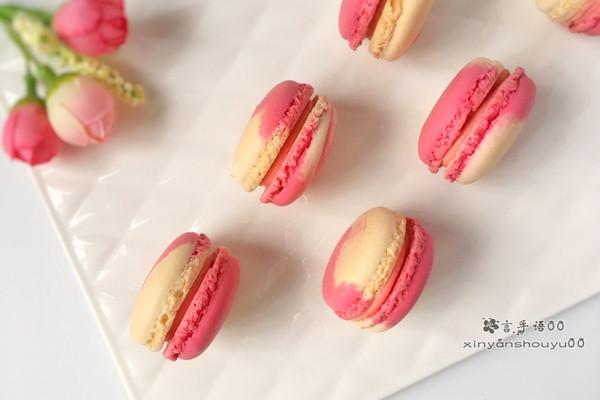 双色马卡龙#盛年锦食·忆年味#的做法