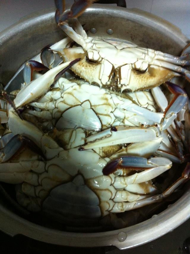 蒸螃蟹的做法图解1