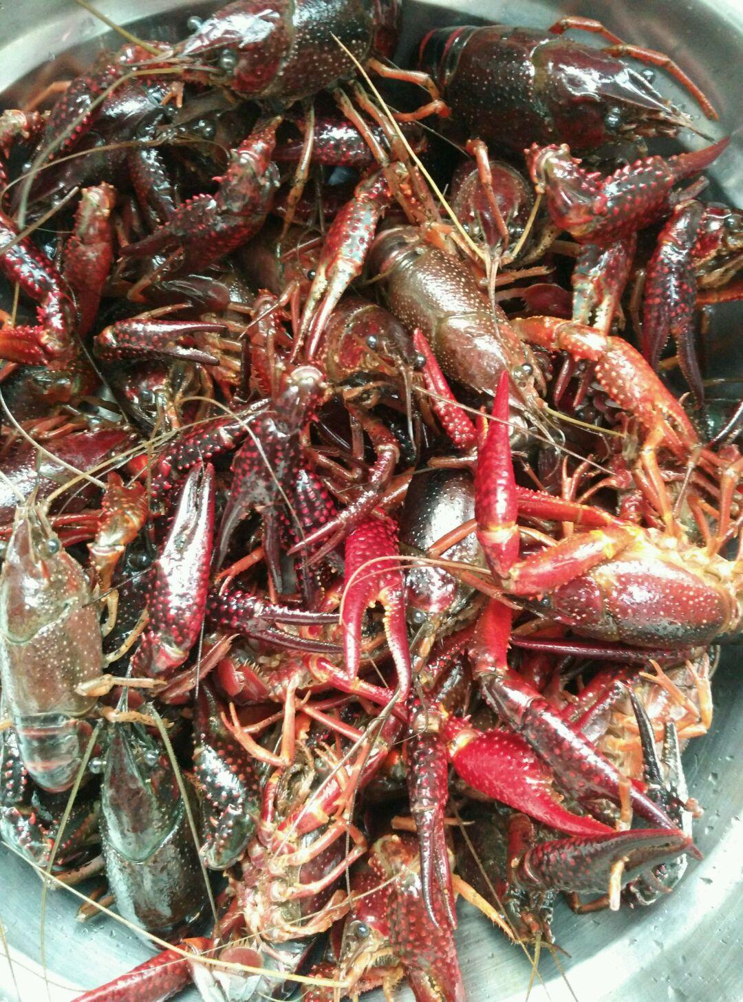 把所有的小龙虾都清理干净,倒在盆里再冲洗两遍,捞出沥干水分