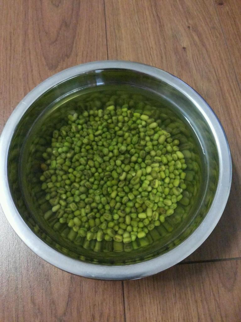 矿泉水瓶发绿豆芽图片