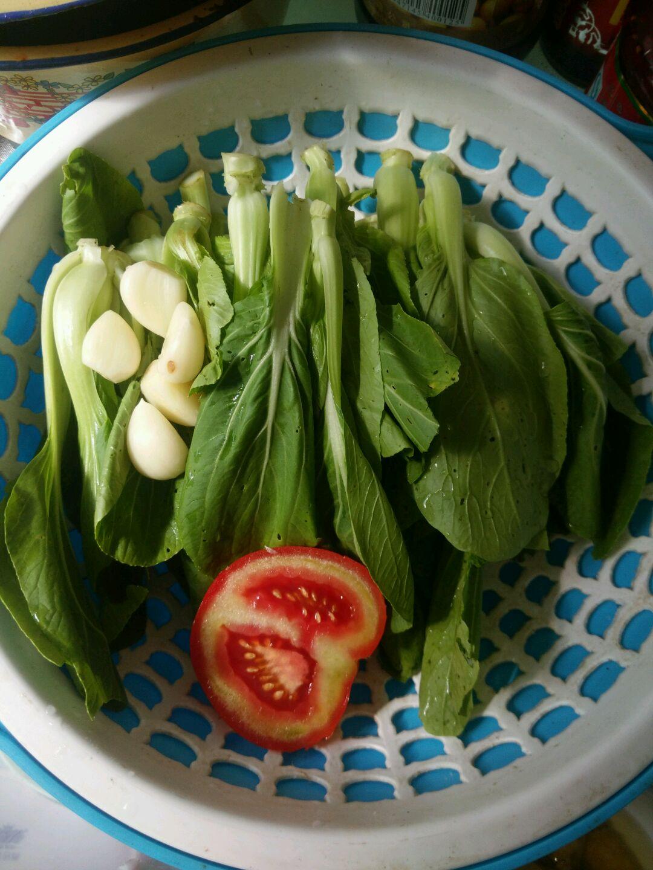 【做法菜】炝炒小白菜的私房图解1朔料瓶能腌菜吗图片