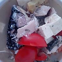 鲤鱼炖豆腐汤