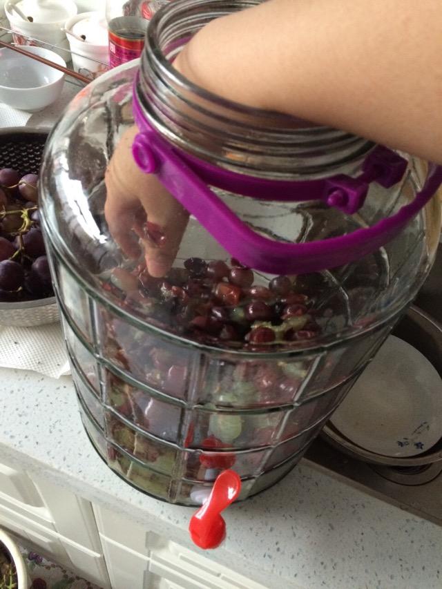 葡萄酒制作的做法步骤