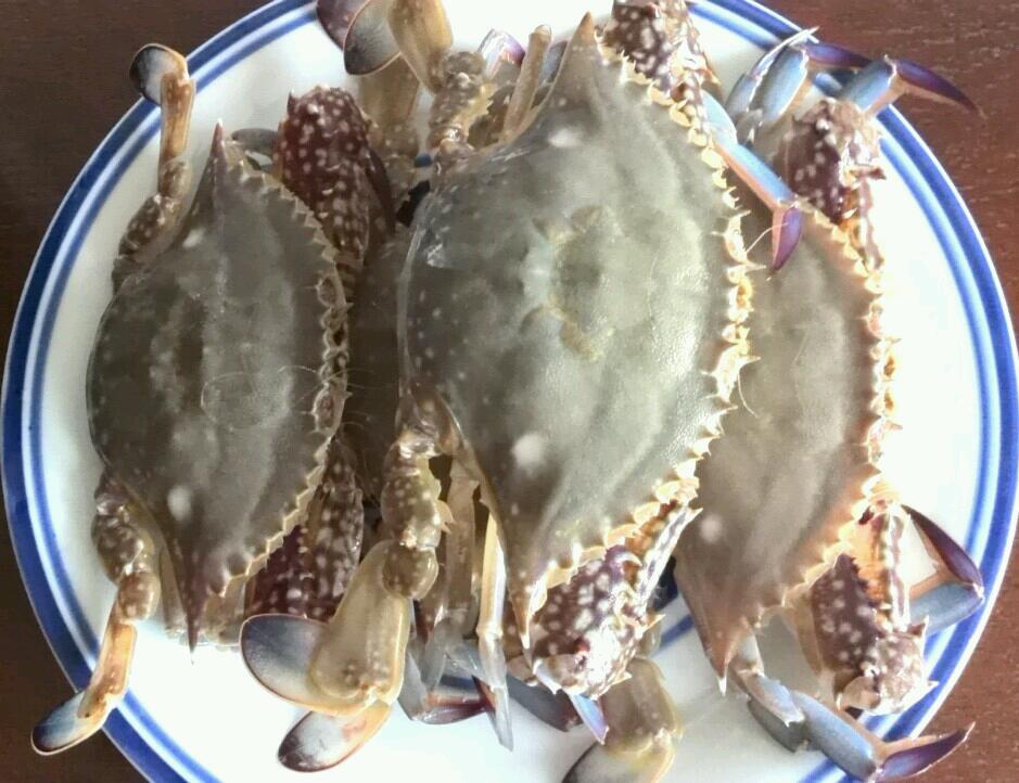清蒸梭子蟹的做法步骤