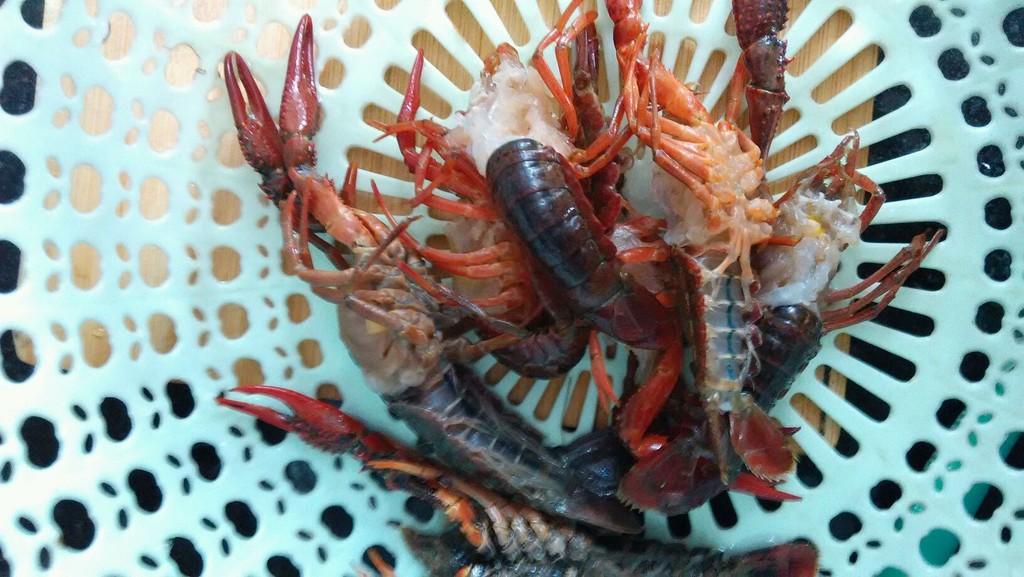 清洗小龙虾,去除虾线和虾头