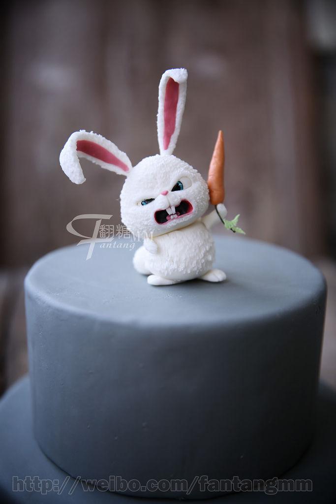 """逼真的兔子雪球就制作完毕了~""""hello,我叫雪球,我要统治世界!"""""""