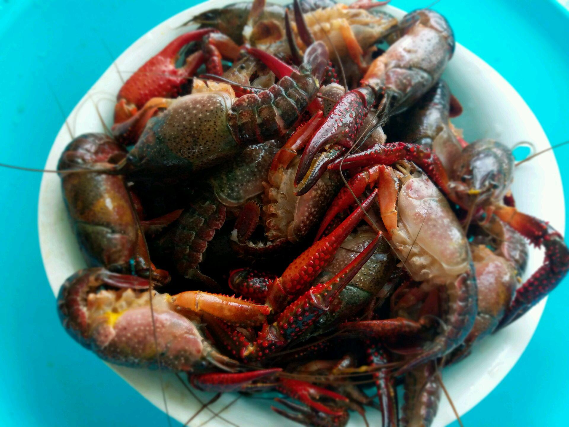 麻辣龙虾的做法图解6