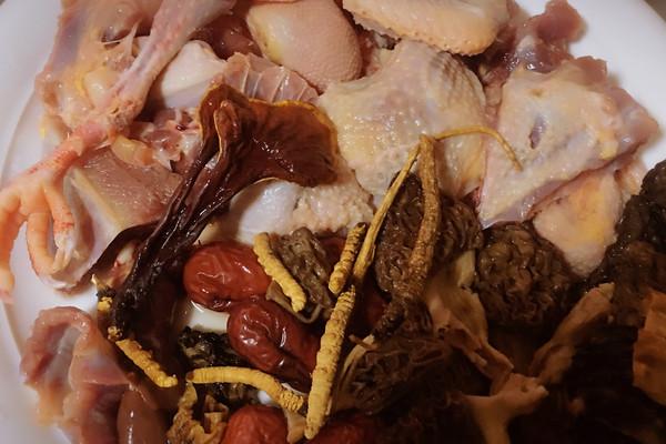 西藏那曲冬虫夏草炖鸽子(孕妇食谱)的做法