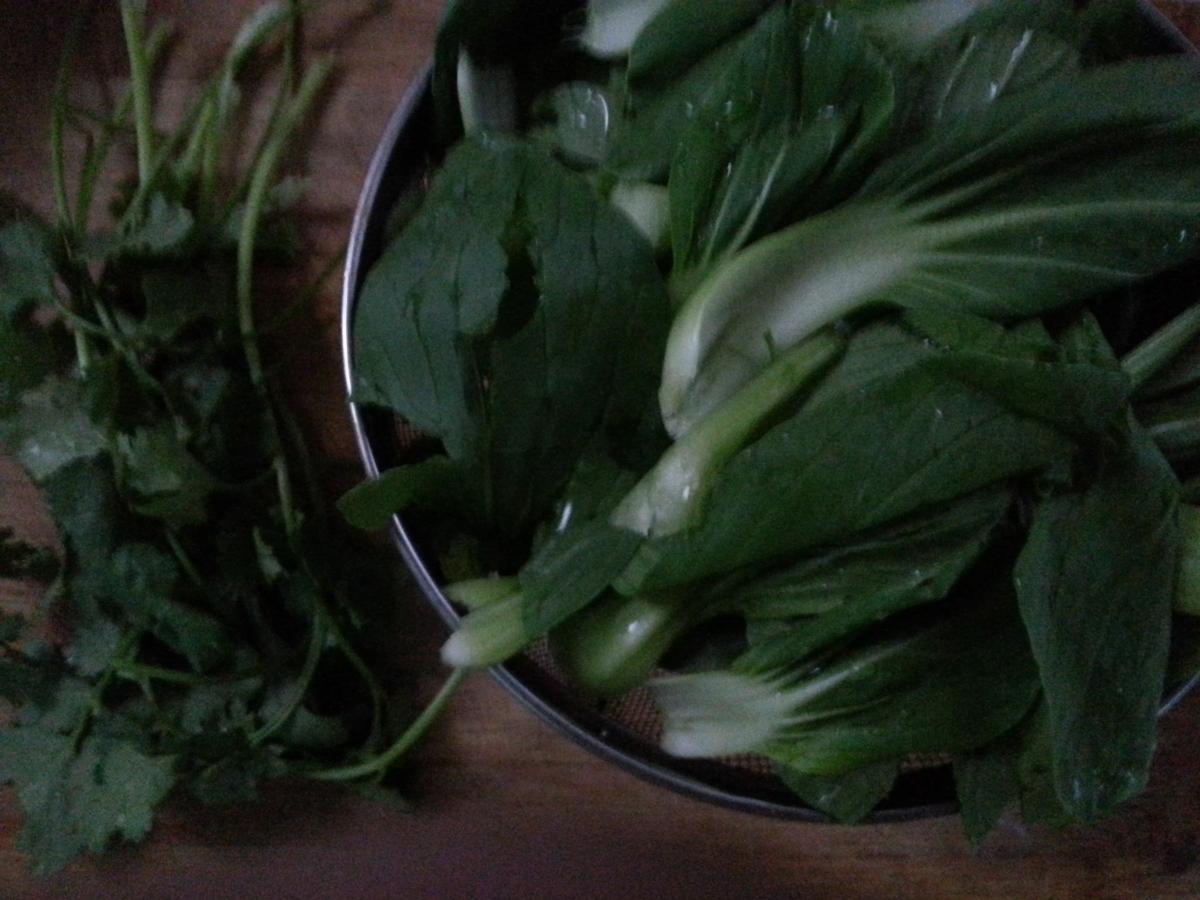 图解 鸡汤/4. 小青菜、香菜清理干净备好待用。