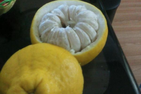 柚子专用果盘的做法 柚子专用果盘怎么做好吃 沧蓝1984 家常做法大全 图片