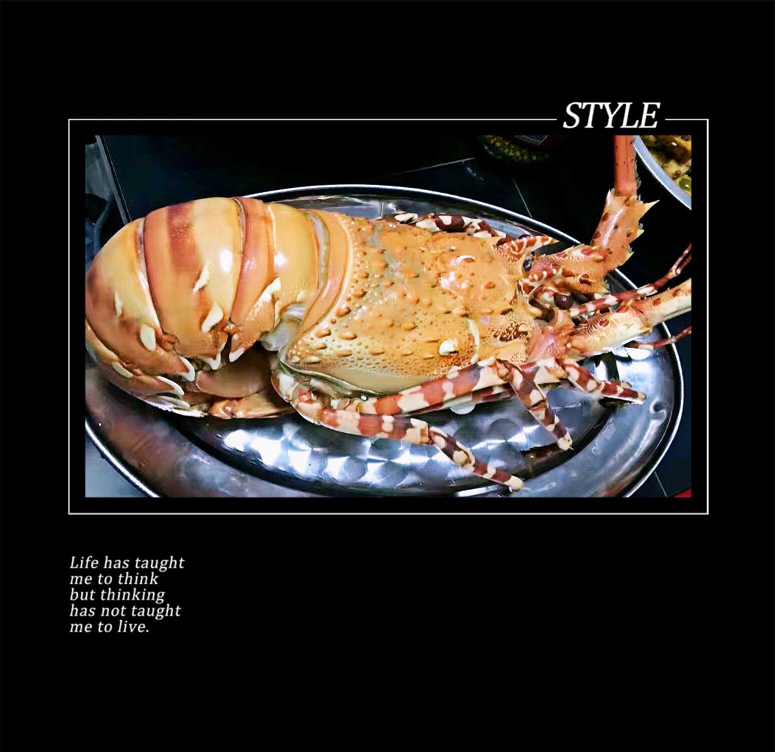 龙虾营养价值高,尤其澳洲大龙虾。上网搜了一下,其肉质松软,易消化,对身体虚弱以及病后需要调养的人是极好的食物。虾肉含有丰富的镁,能很好的保护心血管系统,它可减少血液中胆固醇含量,防止动脉硬化,同时还能扩张冠状动脉,有利于预防高血压及心肌梗死;澳洲龙虾的通乳作用较强,并且富含磷、钙、对小儿、孕妇尤有补益功效;日本大阪大学的科学家发现,澳洲龙虾体内的虾青素有助于消除因时差反应而产生的时差症。 清蒸最能保持住它的营养成分使其不流失,就是价格略贵。当然价格贵也是有理由的,因为其实真正的龙虾是没有大钳子的,比如澳