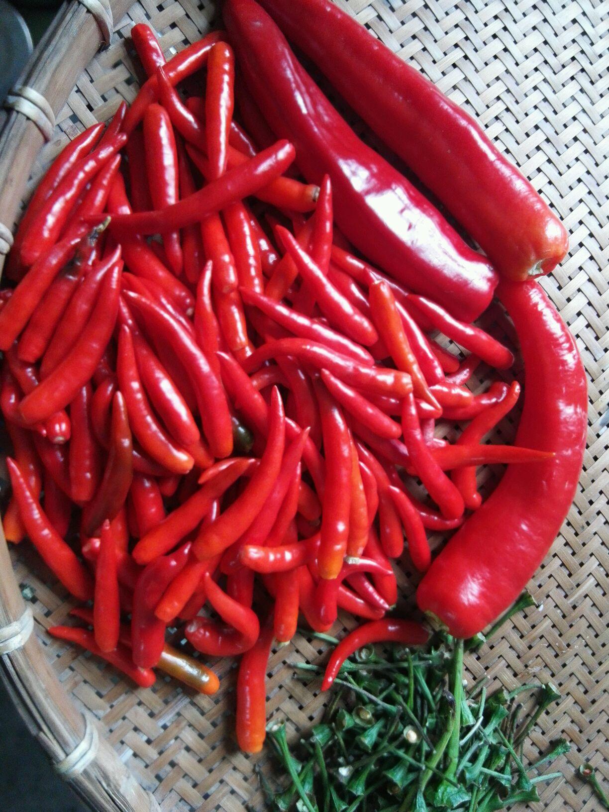 红红火火~蒜蓉辣椒酱的做法步骤