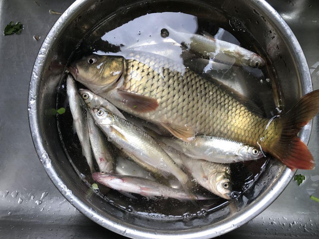 酱烧鲤鱼的做法
