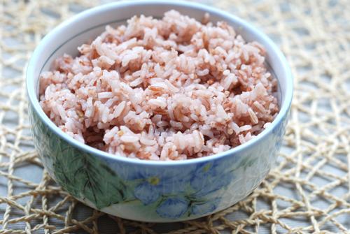 合唱红米饭南瓜汤歌词简谱