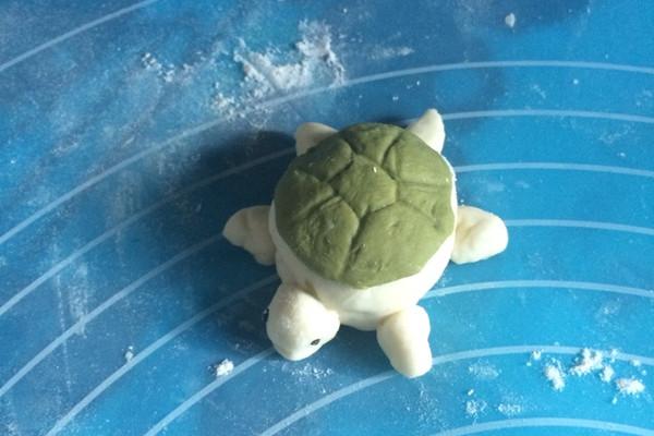 小乌龟死的时候是什么样子的:小乌龟死了之后是什么样子的?
