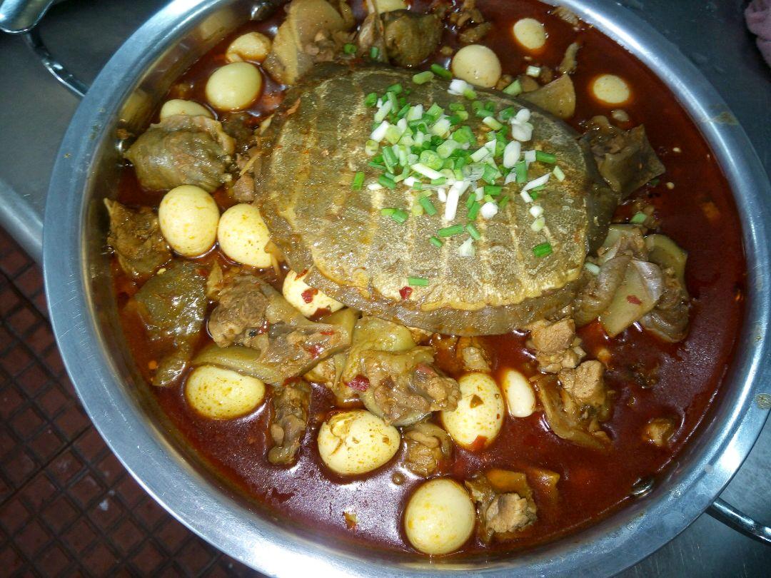 图片炖做法蛋的菜品图解1固始鹅块v图片甲鱼鹌鹑图片