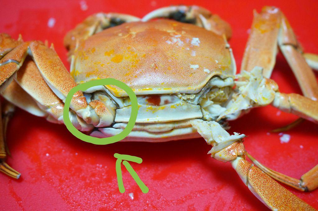 螃蟹蒸蛋羹(附拆蟹肉方法)的做法图解1