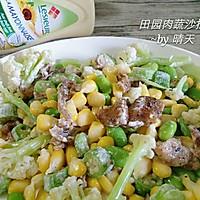田园肉蔬沙拉