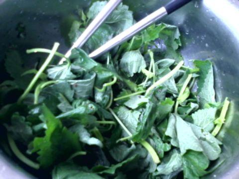 图解 藿香/1. 藿香叶洗净撒盐和黑胡椒粉腌渍一会